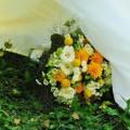 Blumentruhe Berlin 06 - Hochzeitsblumen Berlin