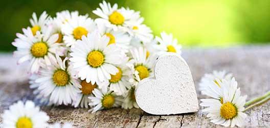 Tipps Blumen Hochzeit - Heirat